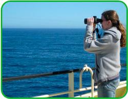 Marine-mammal-observer--Encyclopaedia
